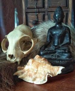 Zen Shaman zazen